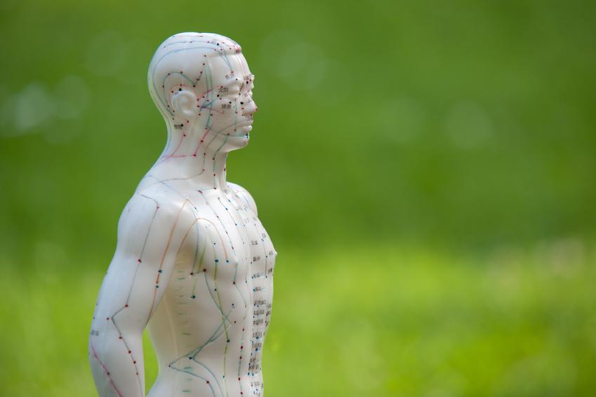 Akupunktur München | Akupunktur Modell