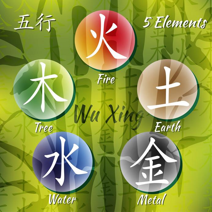 Fünf Elemente TCM